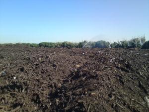 Planta de fabricació de compost vegetal per a fertilització ecològica